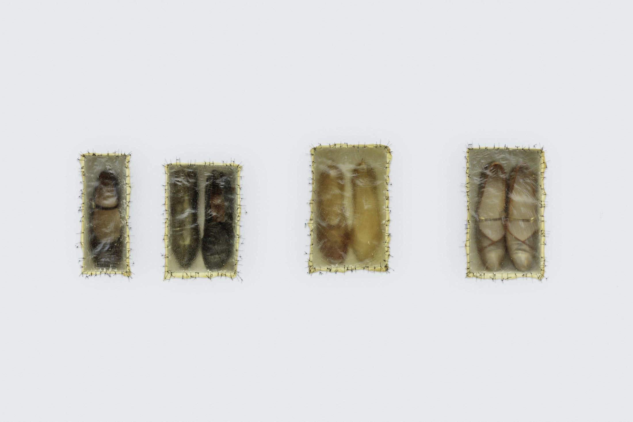 Doris Salcedo, Atrabiliarios, 1993. Wall installation with plywood, seven shoes, cow bladder, and surgical thread. 26 x 54 x 4 in. © Doris Salcedo. Courtesy of the artist and White Cube. The Eileen Harris Norton Collection. Photo: Charles White.