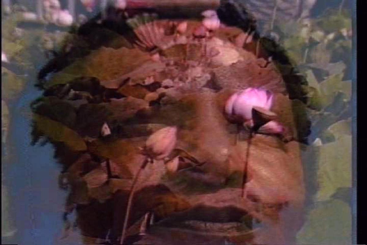 lysses Jenkins,自占卜(1989)。仍然来自带声音的彩色视频,12:01。格里奥特三部曲的第一部分。由艺术家提供。